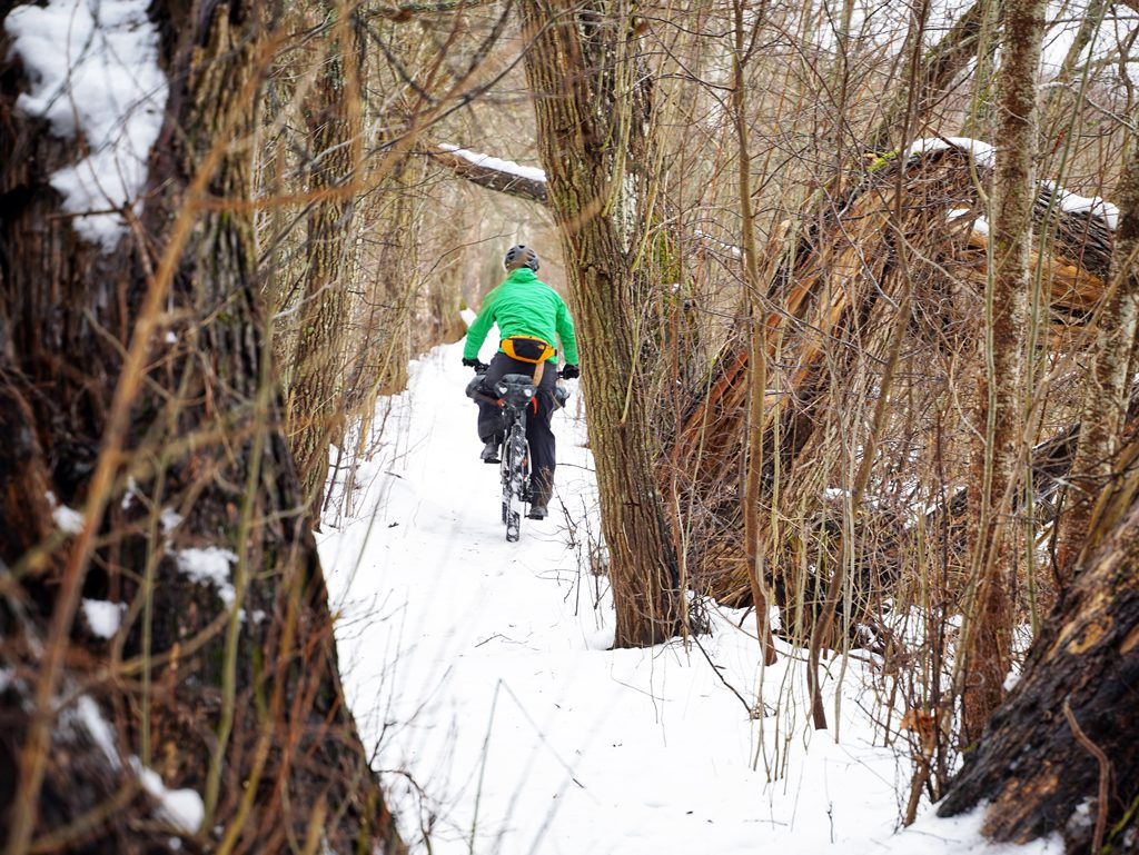 Riding through the snow in the Swedish woods.