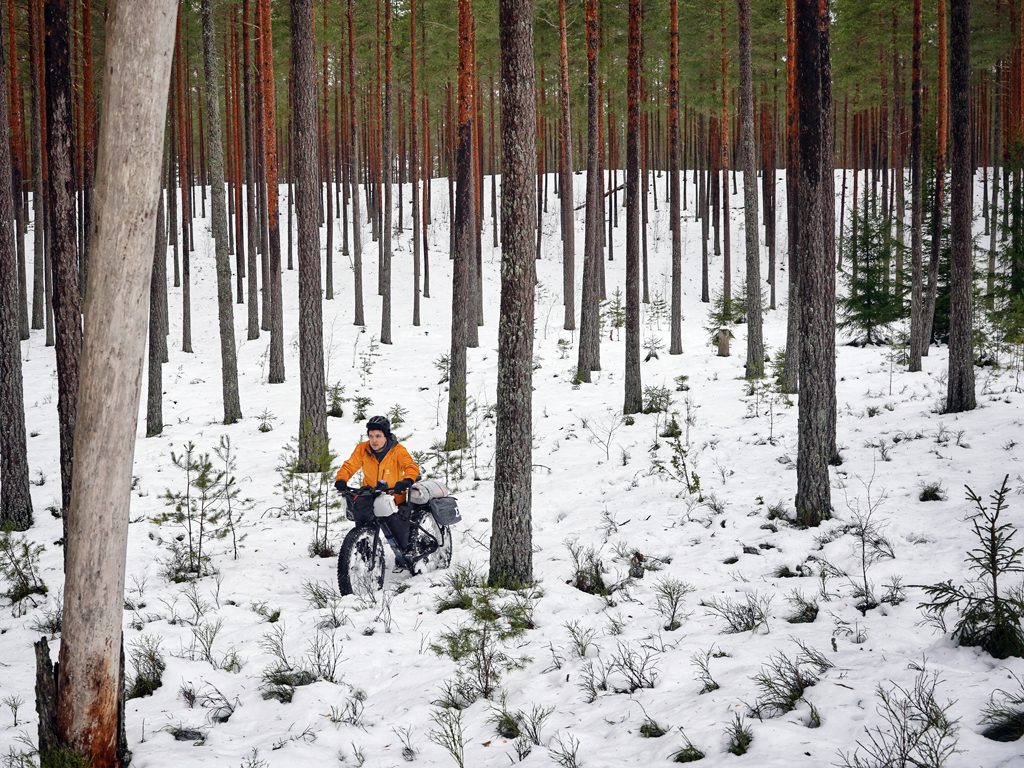 Riding through a Swedish forest in the snow