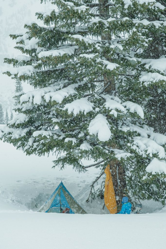 Snow camping under a large tree.