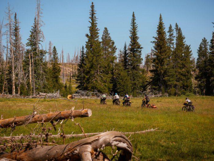 Bikepacking the Oregon Timber Trail